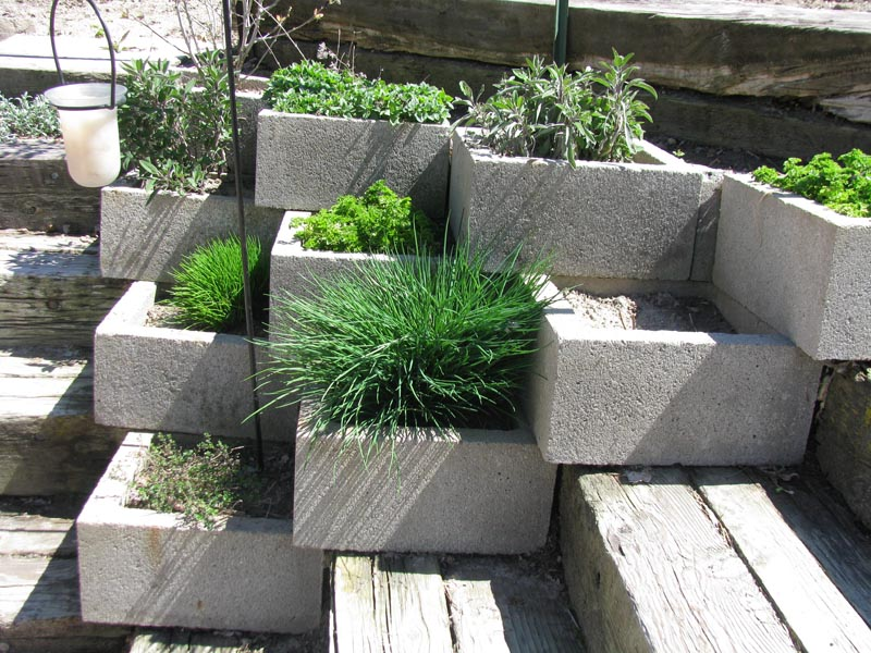 garden design with herb garden is always up first home preparedness consultants with home