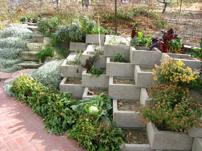 19 best retaining wall images on pinterest backyard for Garden block wall ideas